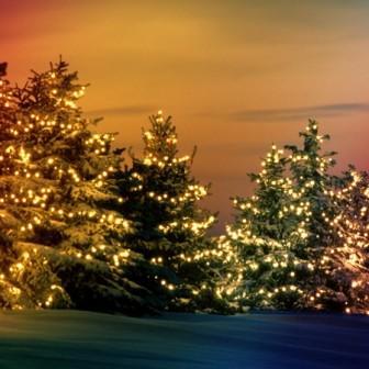 Noël à Lestime