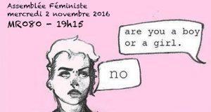 Assemblée Féministe mercredi 2 novembre